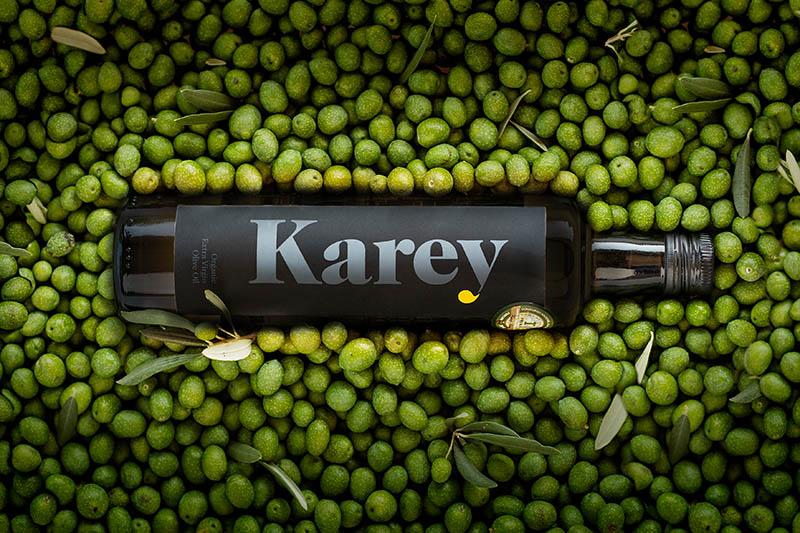 Recolección de oliva ecológica